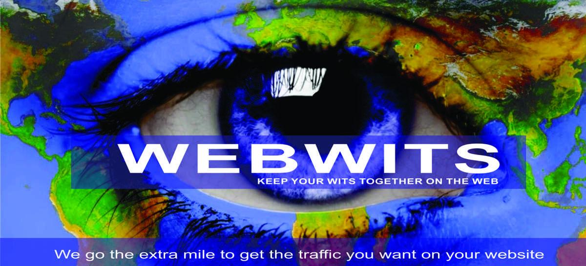 Help my website WebWits